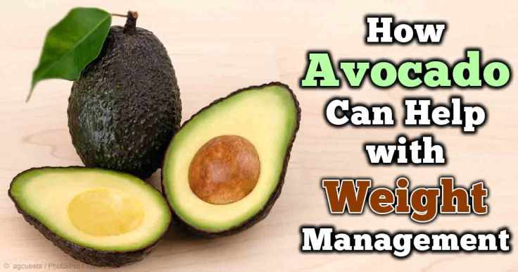 avocado-weight-management-fb.jpg