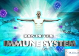 BoostingImmunePic2-1024x723.png
