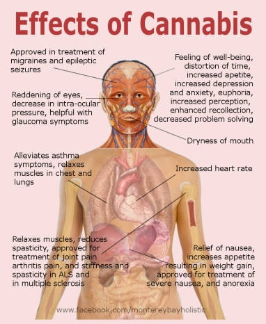 effects-of-cannabis.jpg