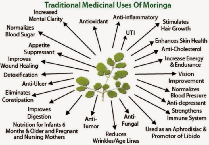 Moringa-health-products-.jpg