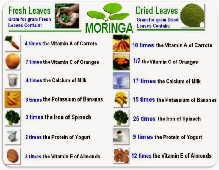 Moringa-value.jpg